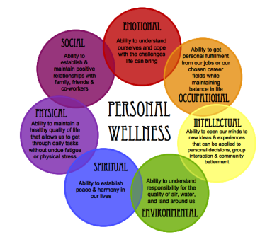 Interconnected lWellness Wheel